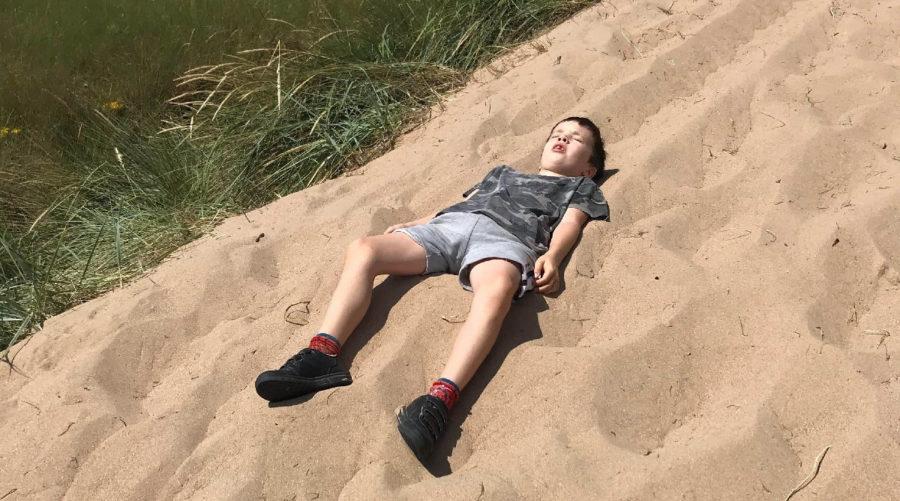 Roo on the beach